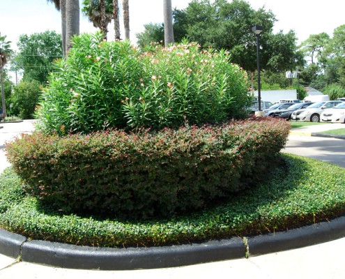 commercial landscaping, houston