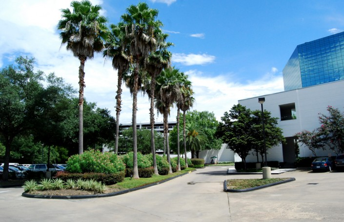 houston, commercial landscaping, tree service